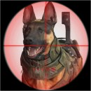 Infinity Ward praat over Riley de hond in Call of Duty: Ghosts