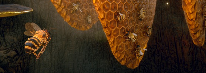 Gespeeld: Bee Simulator