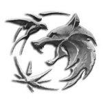 Maak kennis met de personages van The Witcher op Netflix