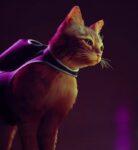 Stray laat zijn kattenstreken in nieuwe gameplayvideo zien